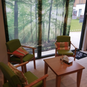 Arthur's Shed at Arthur Rank Hospice was transformed into a Garden Room for staff to relax during the COVID-19 lockdowns in 2020