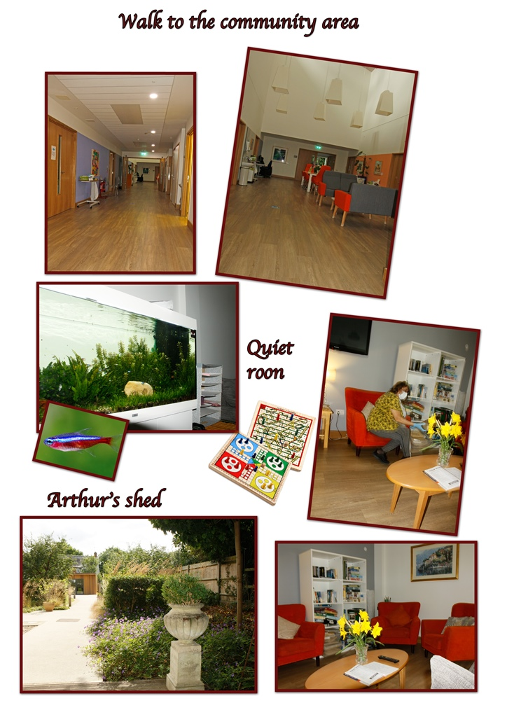 Collage of images Laine took of the Inpatient Unit, with titles 'Walk to the community area', 'quiet room' and 'Arthur's Shed'